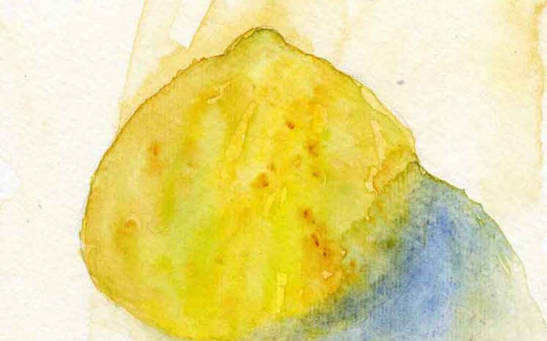 Half a lemon – Daily painting #808