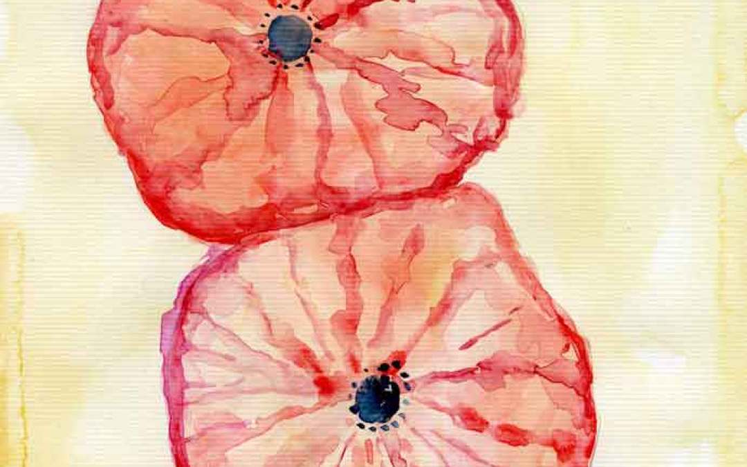 Two poppies – Daily painting #813