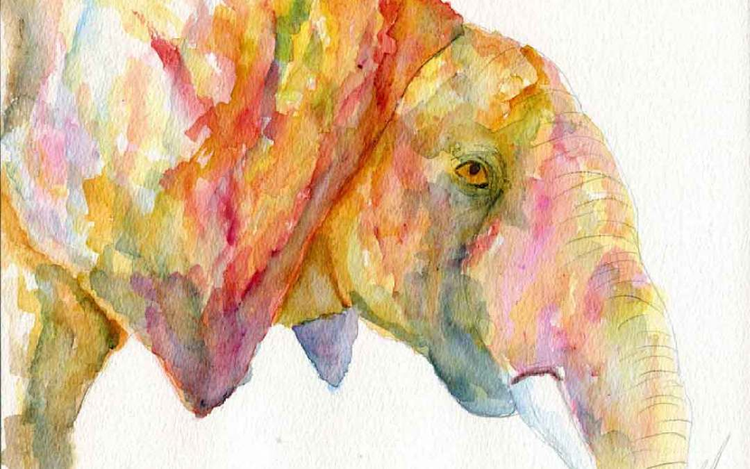 Abstract Elephant – Daily Painting #869