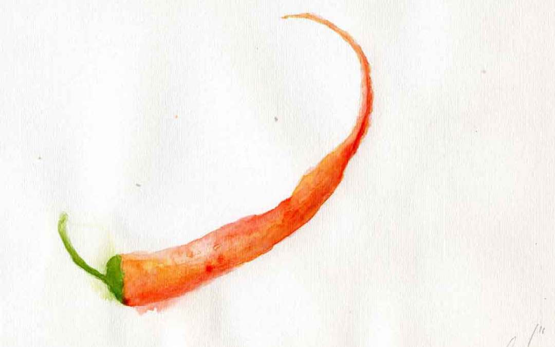 Thin Single Red Chili – Daily painting #876