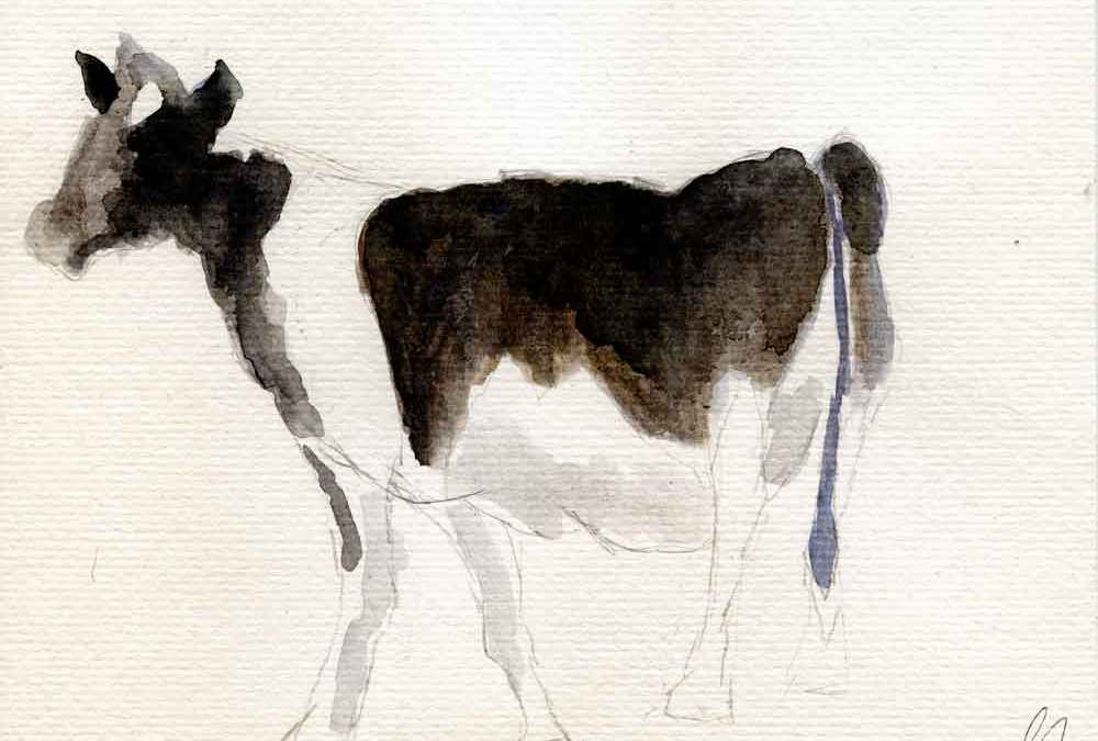 Black and white cow -Daily painting #1197