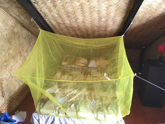 The bed covered in the mosquito net