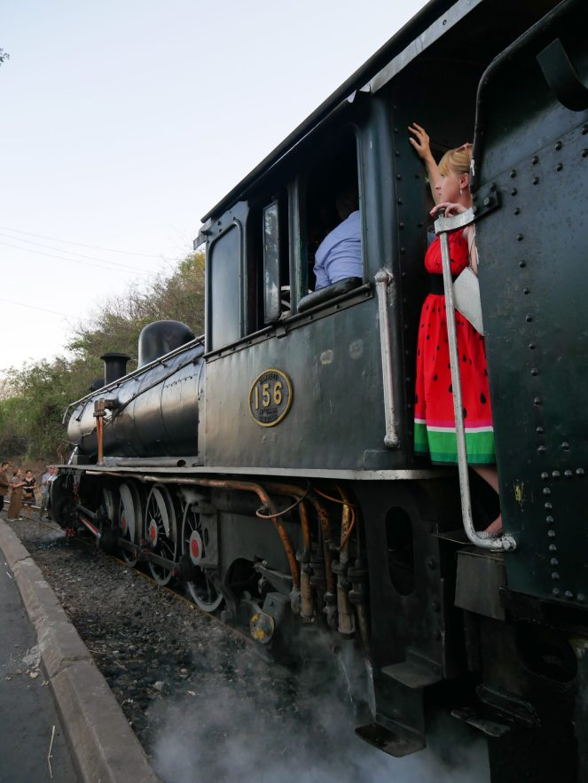 Rosie looks out from the side of the cab of the Royal Livingstone Express steam engine