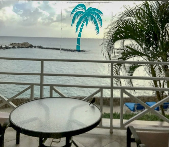 The a view of the sea from the window with the stone groin coming around. Rosie has celverly lined up a palm tree sticker on the window to make it look like the palm tree is on the groin....OK, it wasn't that clever
