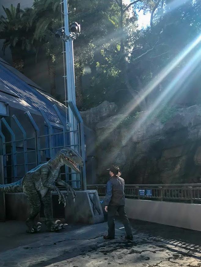 A dinosaur wrangler walks a velociraptor back into its enclosure