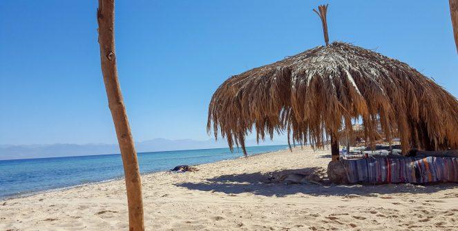 a palm shade on the beach at Aqua Sun Beach Camp, Gulf of Aqaba, Egypt