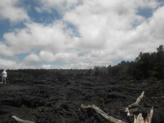 Hawaii Day 5 (112)