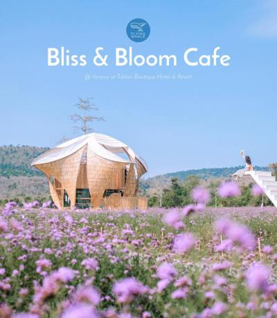 Bliss & Bloom Café ใ