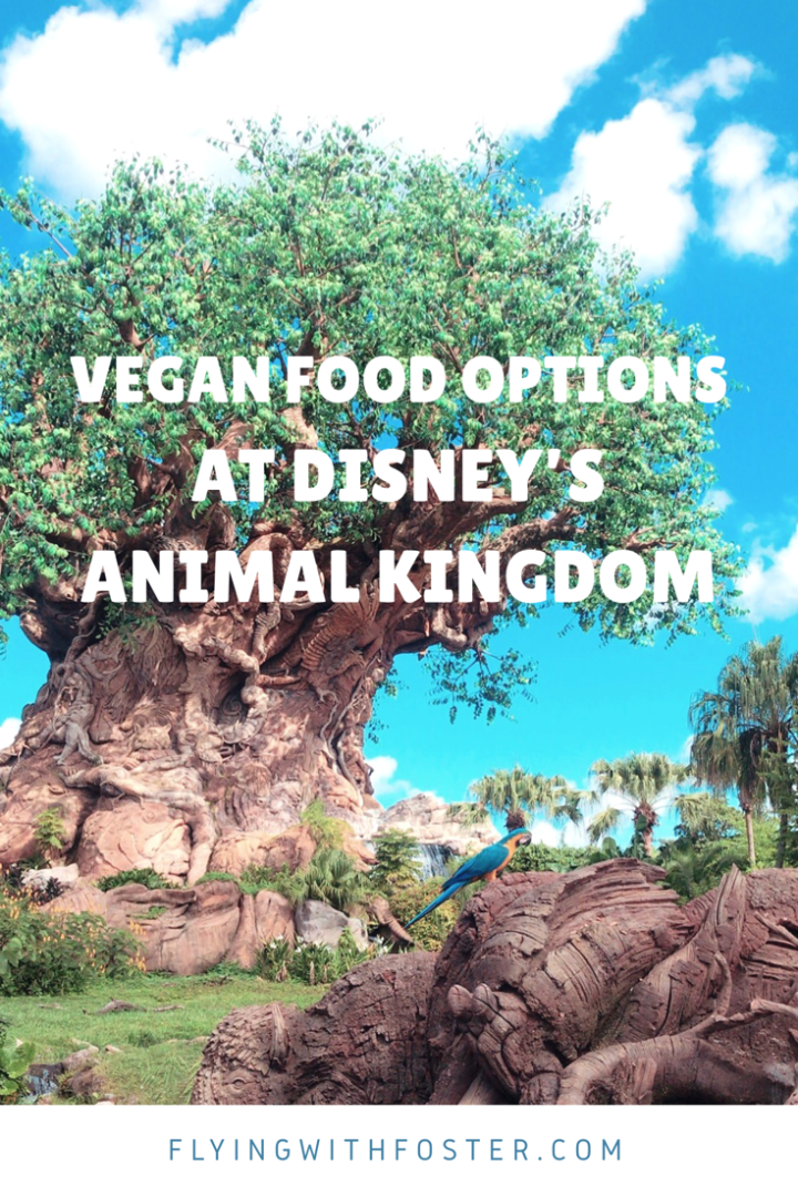Vegan Food Options at Disney's Animal Kingdom