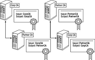 Lesson 1: Planning a Certification Authority Hierarchy
