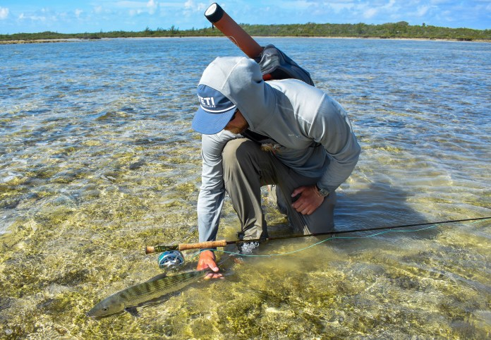 rex bonefish release (paul).jpg