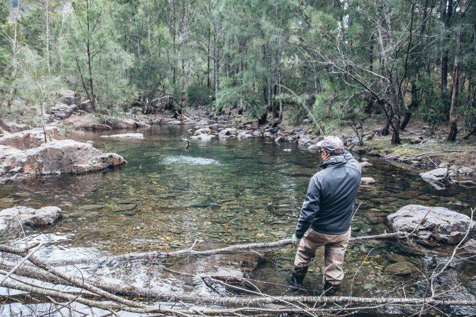 Josh Guiding Blue Mountains Australia