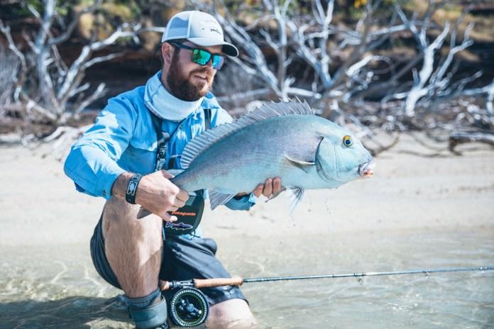Wessel Islands Australia - Blue Bastard