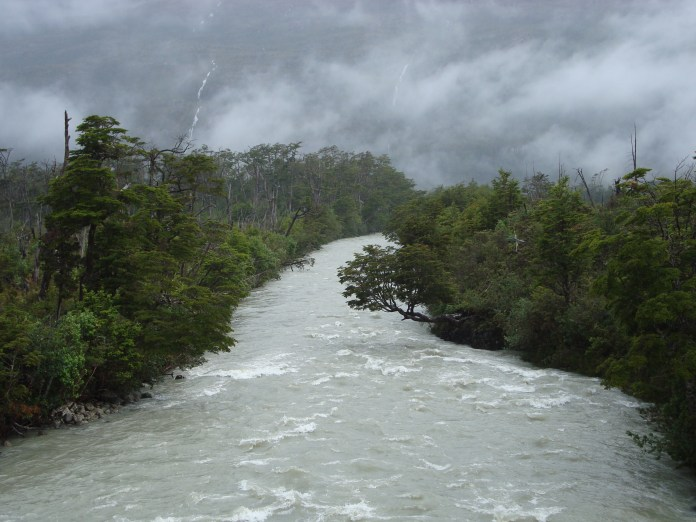 A flooded river flowing through forest.