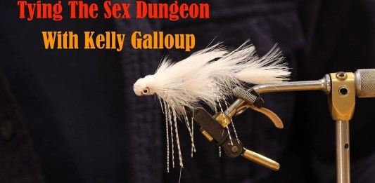 sex dungeon fly