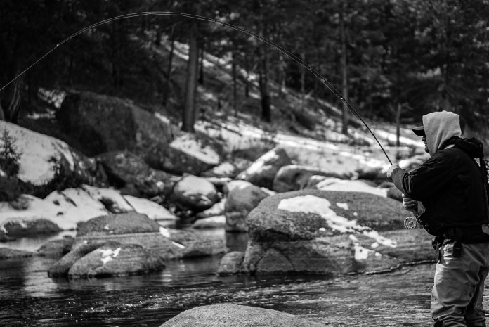 An angler fights a fish in Cheesman canyon; a famous stretch of the South Platte