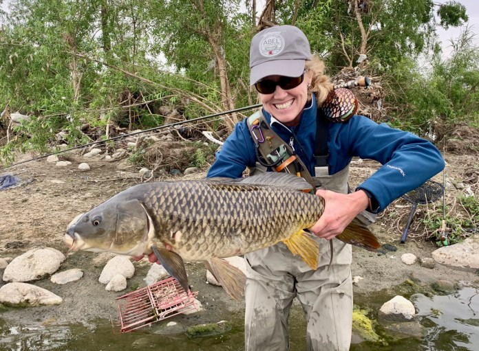 World Record Carp LA River