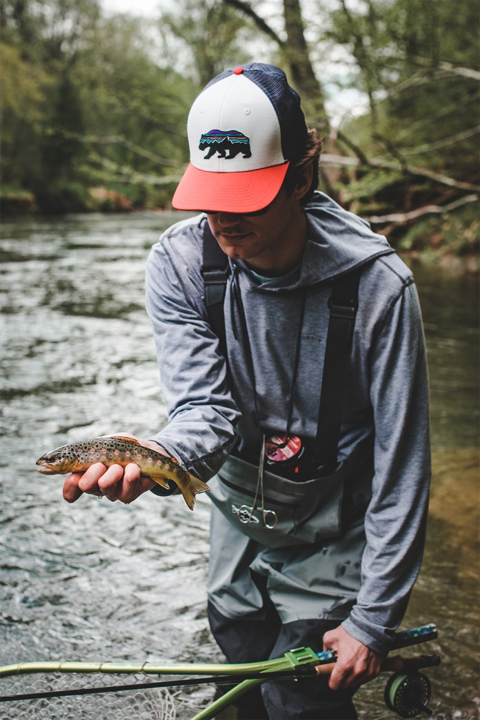 Admiring a Wild Brown Trout caught on a dry fly