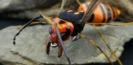 envision murder hornet
