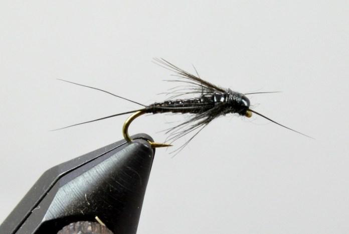 Little Stonefly
