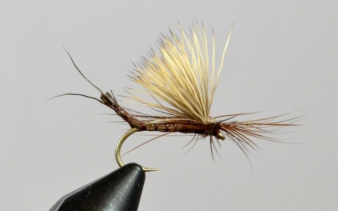 Brown Drake Dry