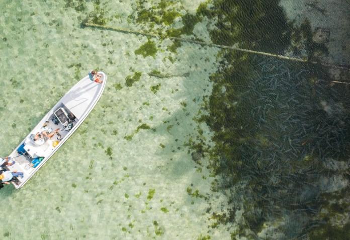bonefishing in belize