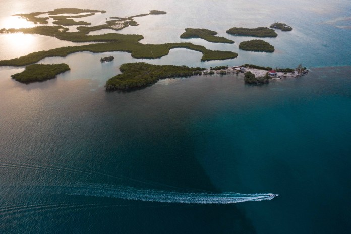 belize fly fishing cayes