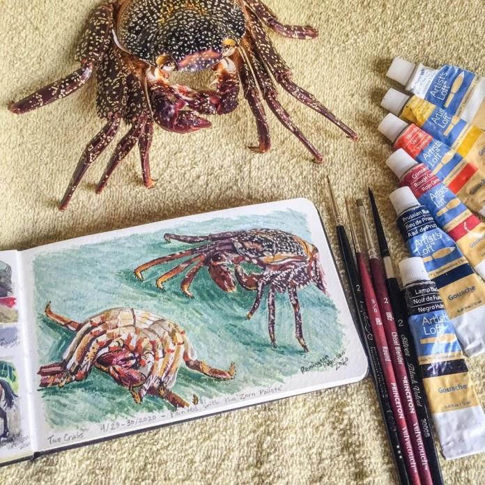 Rem Robinson Crab