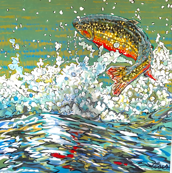 brook trout jumping