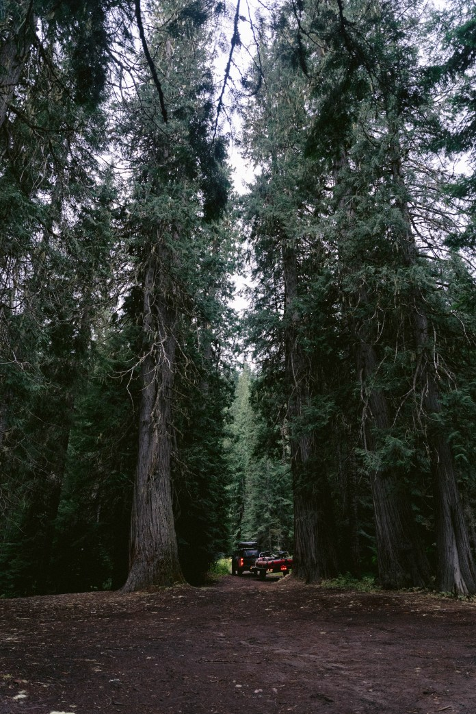 camping in ID