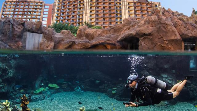 Aulani Spa Diving