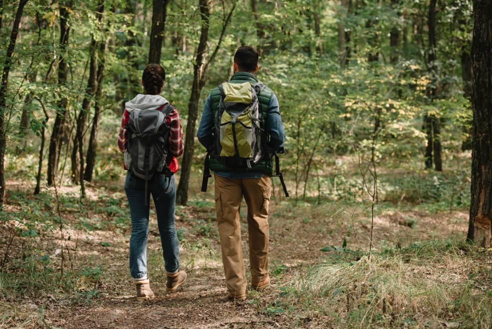 O que é ecoturismo melhores praticas e cuidados