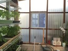 New window from inside