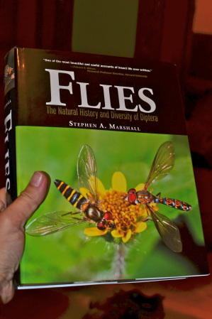 fly-book