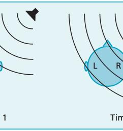 sound shadow diagram introduction to electrical wiring diagrams u2022 honda 1100 c3 06 vt 1100 wire diagram [ 1394 x 652 Pixel ]