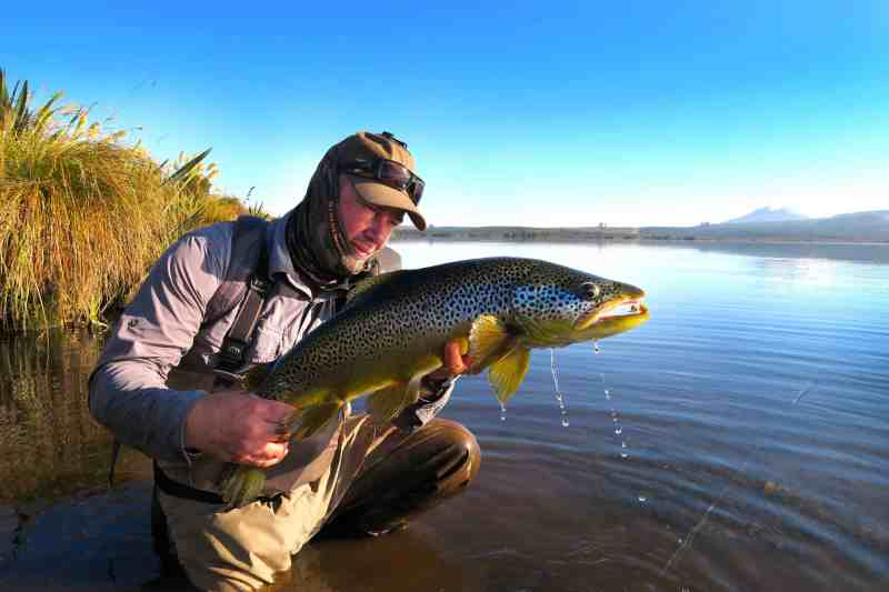 7 Weight Fly Rod Uses