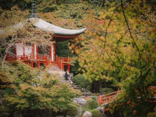 Daigo-Ji Temple surrounded in Autumn Japanese maple leaves