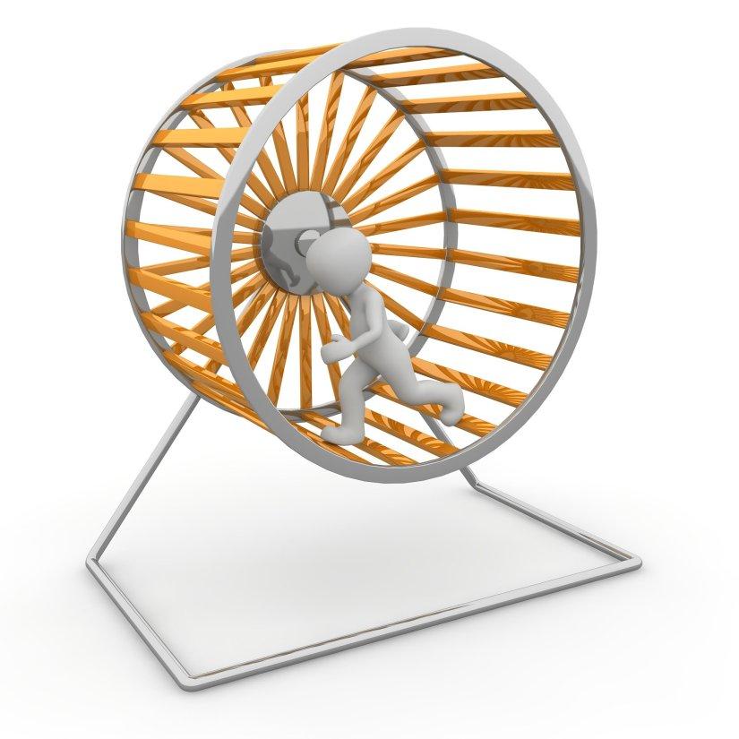 Hamster Wheel Fly to FI