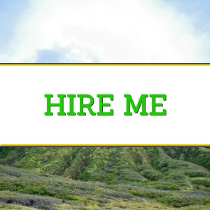 Fly to FI Hire Me Graphic