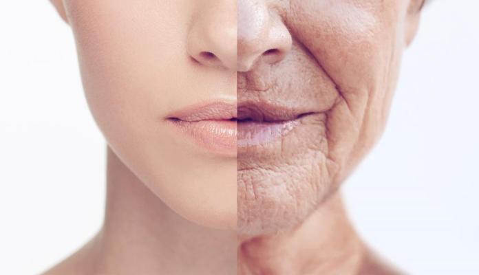 замедлить старение