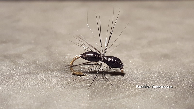 Super simple fly to tie. Takes only 2 minutes and works really well where you have ants running close to the water