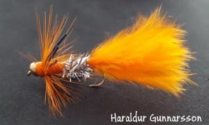 Orange Dyrbitur