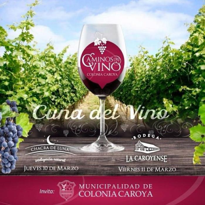 caminos del vino2