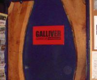 Galliver