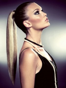 Sleek Pony