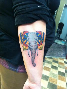 elephant with butterfly ear