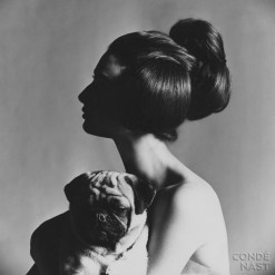 Allegra Caracciolo di Castegneto, Italian painter, modeling bundle hairstyle, holding her pug Charlie.