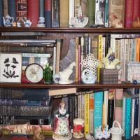 My Cabinet of Curiosities