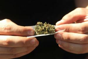 Varios países, entre ellos el Brasil, Chile, Colombia, el Ecuador y el Uruguay, están debatiendo nuevas leyes sobre el uso del cannabis