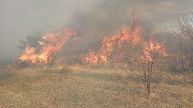 Incendio en Las Lomitas